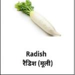 Mooli (मूली) – 20 Rs. 2 Pcs.